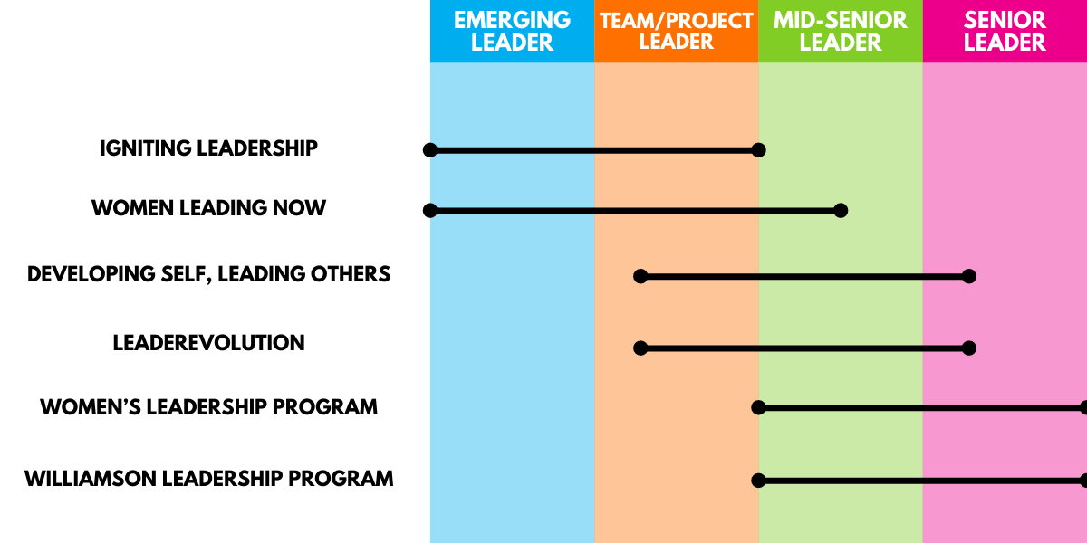 visual breakdown of leadership programs